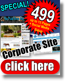 $499 Dollar Web Design Special