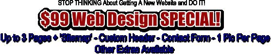 99 Dollar Web Design Package