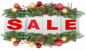 Web Design Holiday Sale