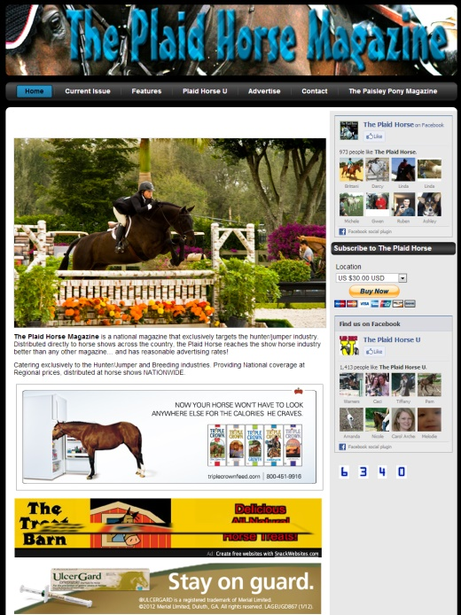 The Plaid Horse Equestrian Web Design Virginia