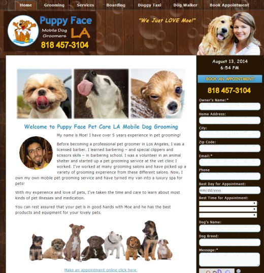 Dog Grooming Web Design