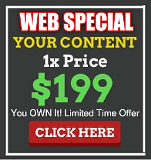Web Design under $200